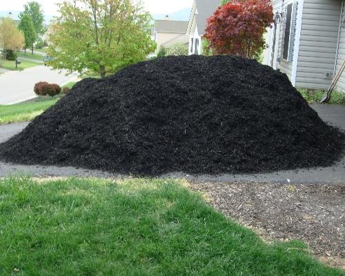terra-preta-curitiba-para-jardinagem
